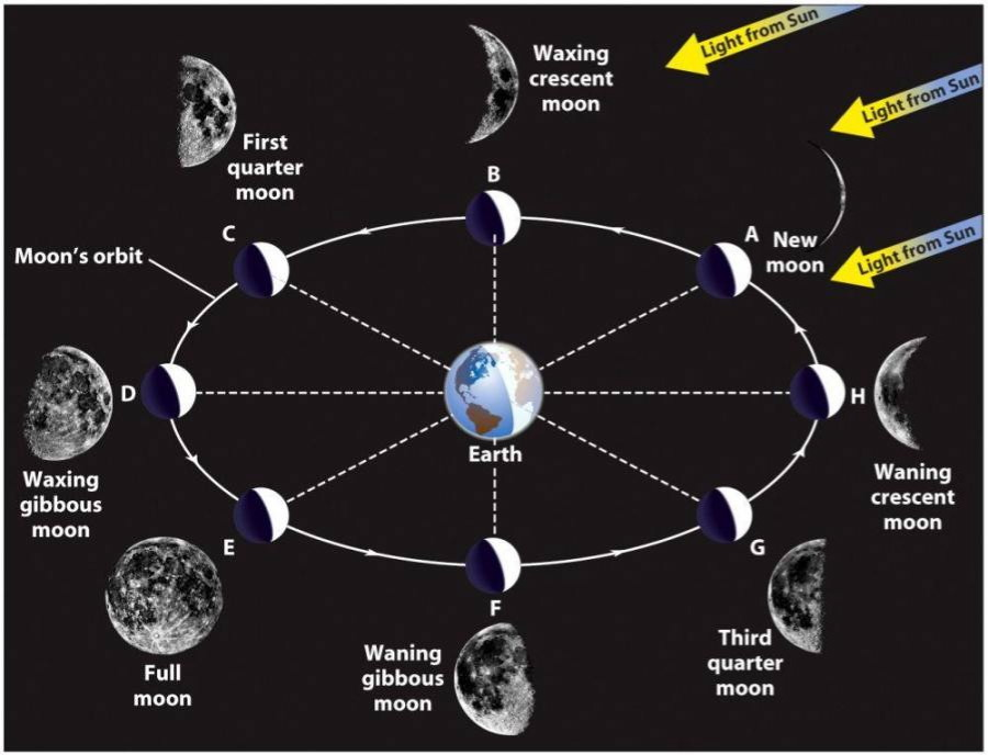 lunar phases diagram Gallery